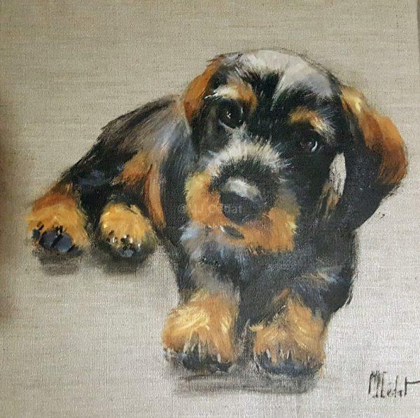Bébé Teckel chiens-Marie-Joëlle Cédat-artiste animalier peinture animaliere-art-animalier- peintre-animalier