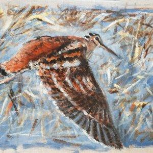 bécasse en vol – Acrylique sur lin brut – 40 x 30 cm