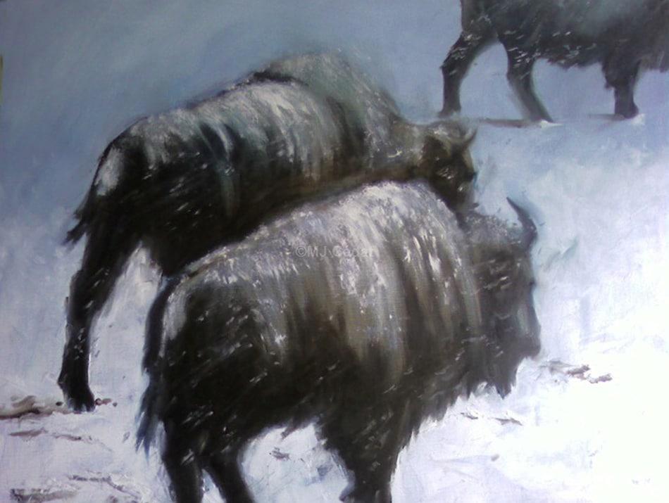 Bisons - Huile sur toile - 120 x 80 cm