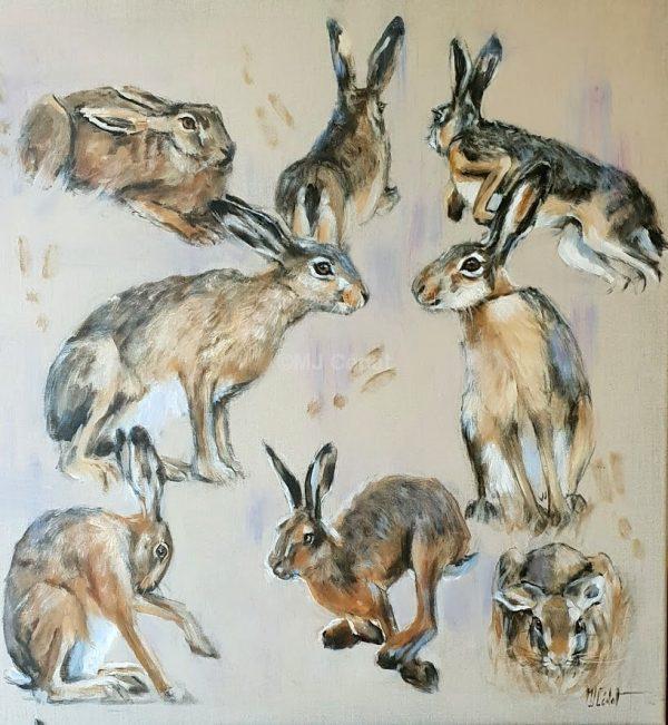 Etudes de lièvres -Marie-Joëlle Cédat-artiste animalier peinture animaliere-art-animalier- peintre-animalier