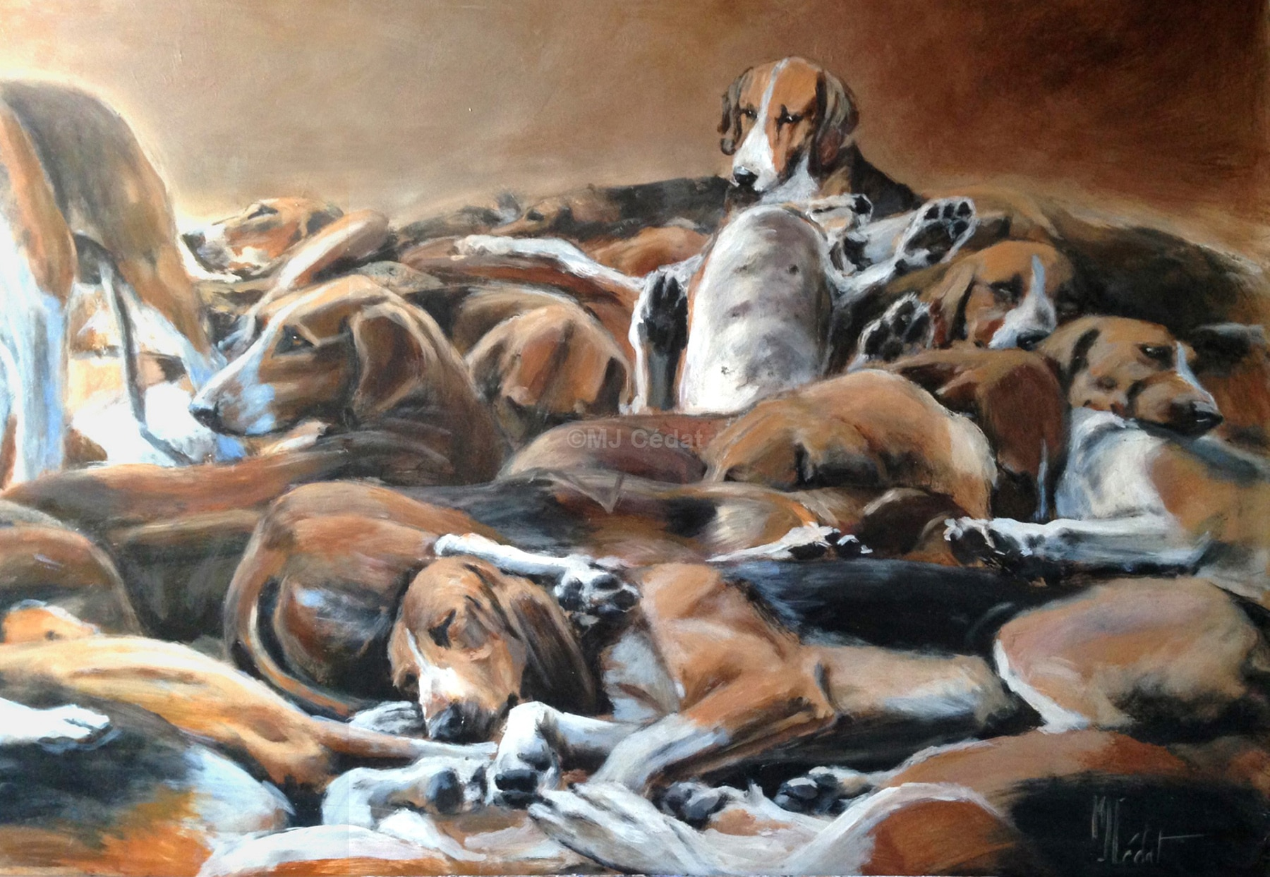 meute chiens -Marie-Joëlle Cédat-artiste animalier peinture animaliere-art-animalier- peintre-animalier