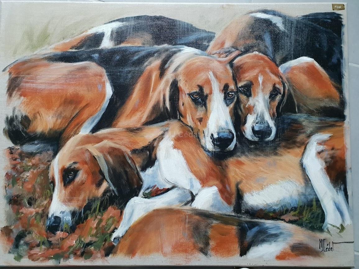 Meute couchée chiens-Marie-Joëlle Cédat-artiste animalier peinture animaliere-art-animalier- peintre-animalier