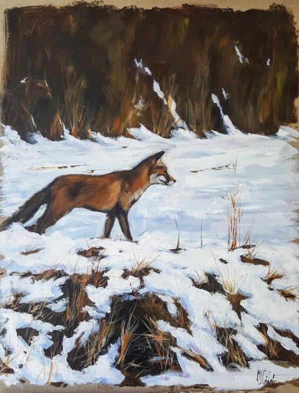Renard à l'affut -Marie-Joëlle Cédat-artiste animalier peinture animaliere-art-animalier- peintre-animalier