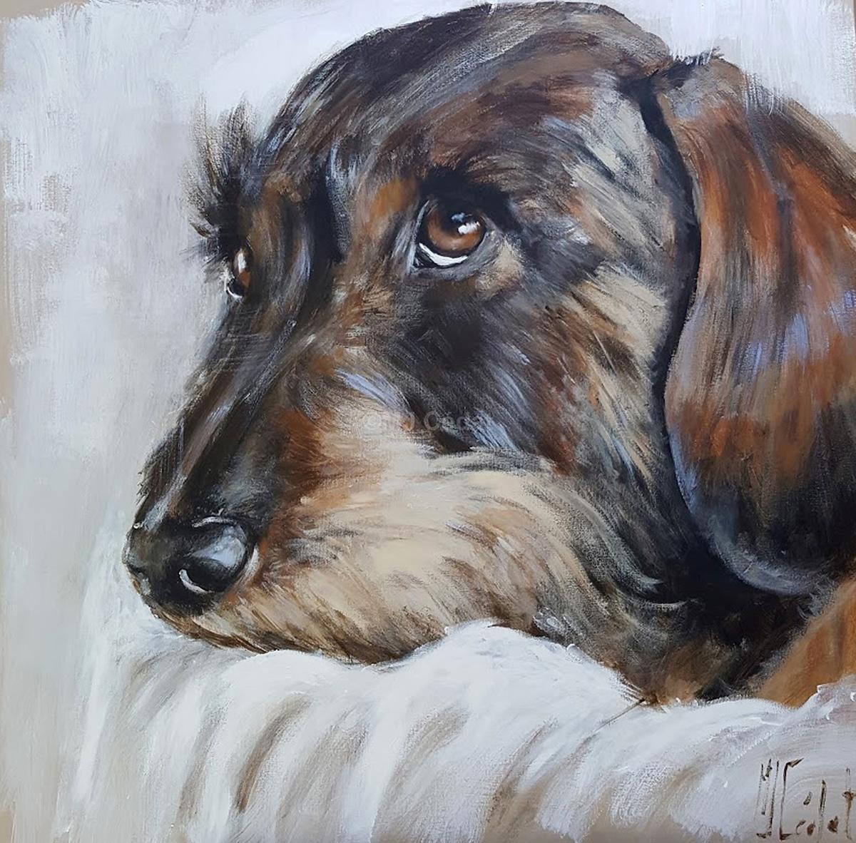 Teckel epuisé -Marie-Joëlle Cédat-artiste animalier peinture animaliere-art-animalier- peintre-animalier