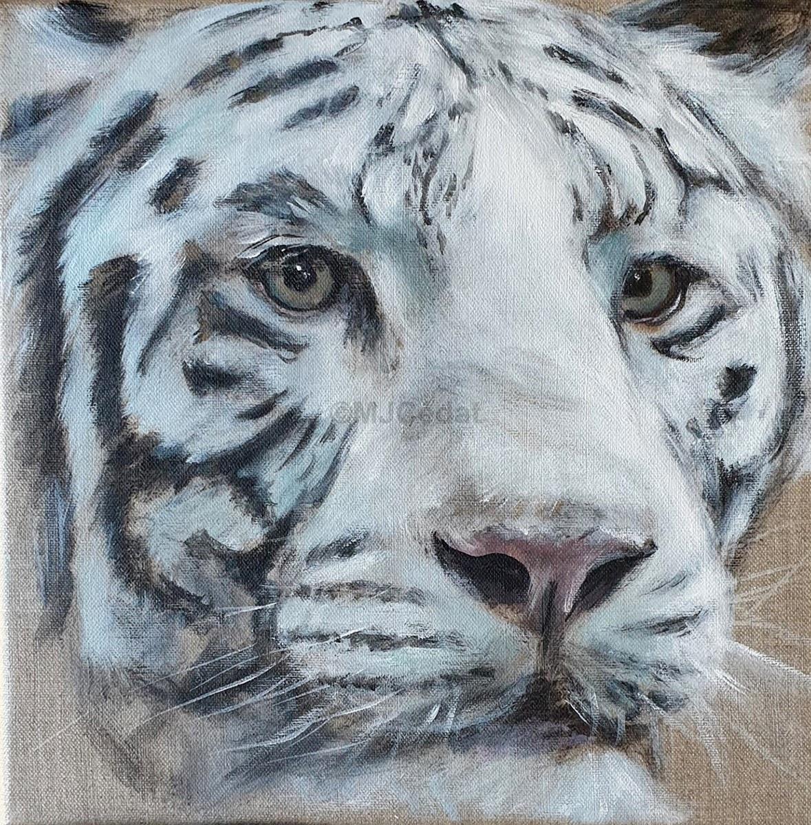 Tigre Blanc -Marie-Joëlle Cédat-artiste animalier peinture animaliere-art-animalier- peintre-animalier