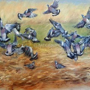 Pigeons dans les chaumes – Acrylique sur lin brut – 60 x 50 cm