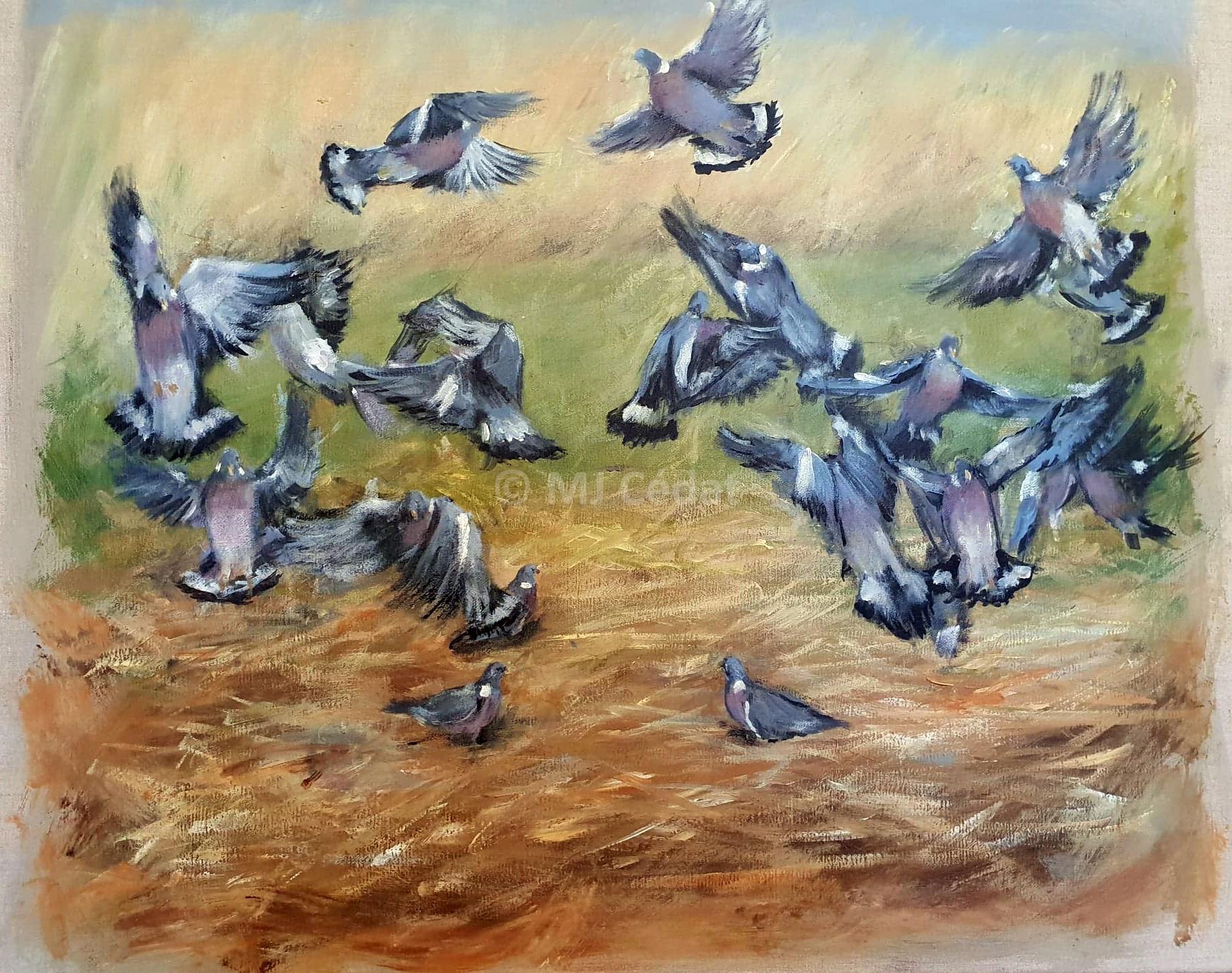 Pigeons dans les chaumes – Acrylique sur toile de lin brut-Marie-Joëlle Cédat-artiste animalier peinture animaliere-art-animalier- peintre-animalier