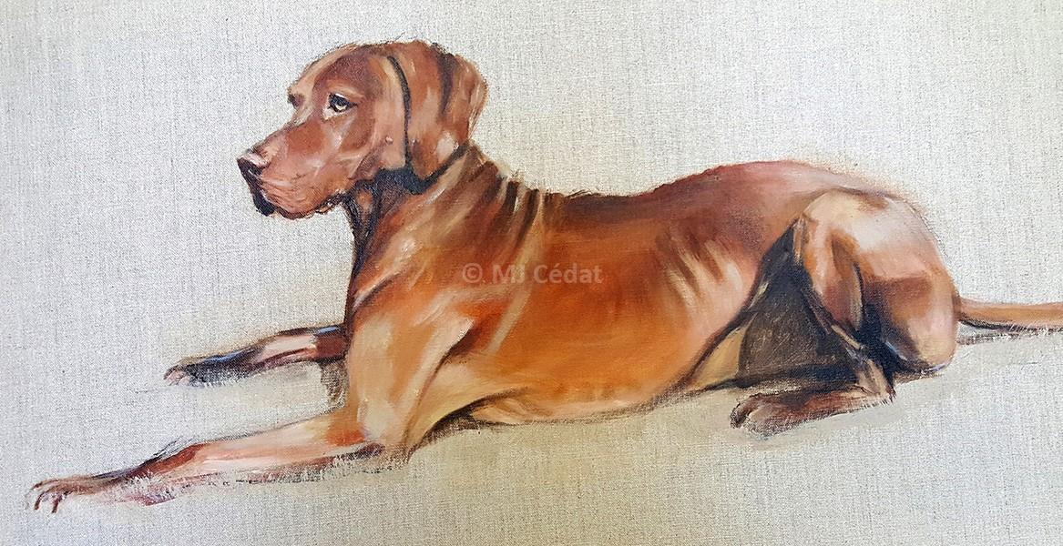 Braque Hongrois couché – Acrylique sur toile de lin brut 70 x 40 cm