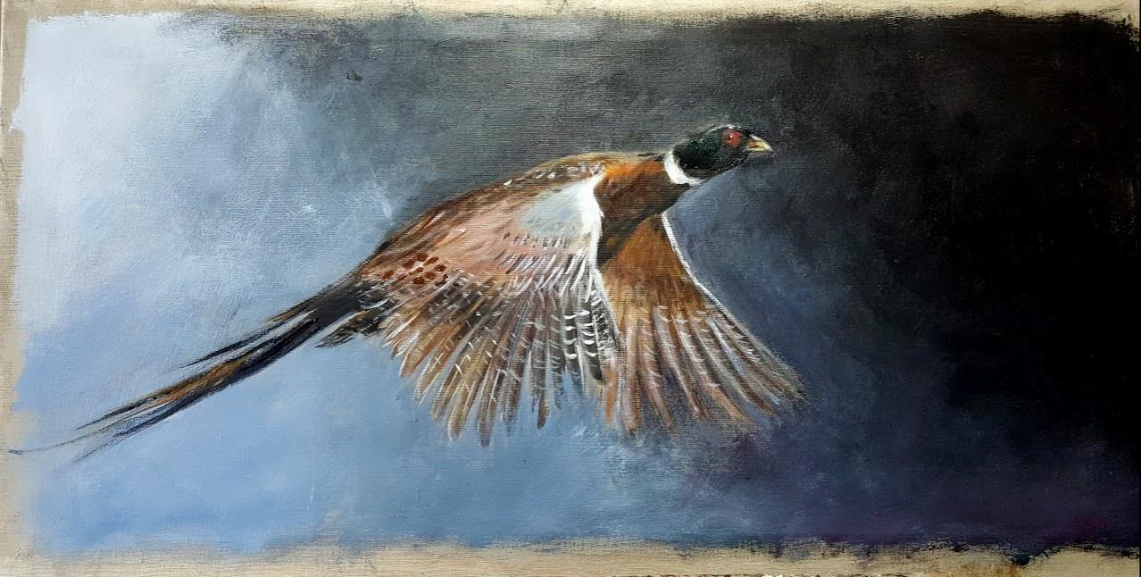 Faisan dans l'obscure –-Marie-Joëlle Cédat-artiste animalier peinture animaliere-art-animalier- peintre-animalier