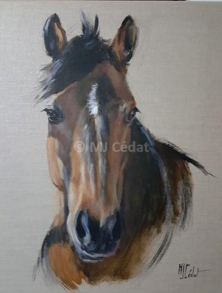 portrait Référence chevaux – Acrylique sur toile de lin brut-Marie-Joëlle Cédat-artiste animalier peinture animaliere-art-animalier- peintre-animalier