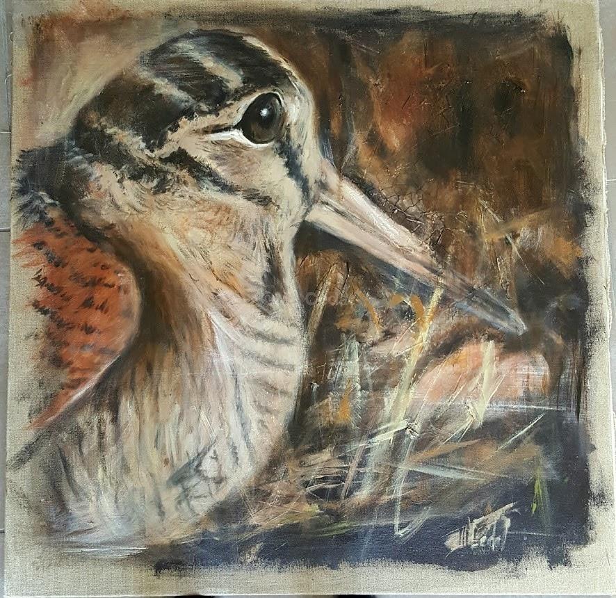 Bécasse de près-Marie-Joëlle Cédat-artiste animalier peinture animaliere-art-animalier- peintre-animalier