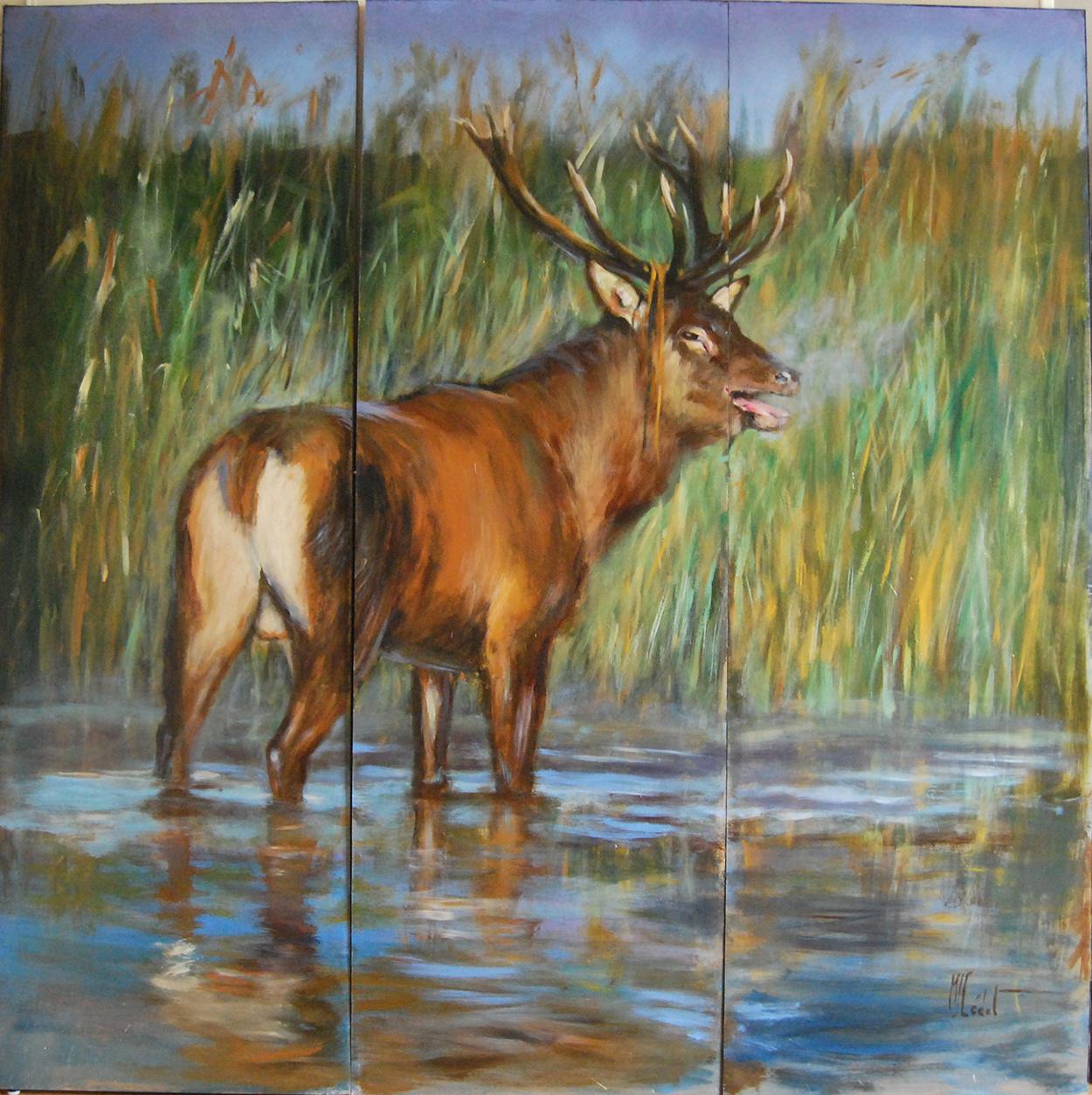 paravent bat l'eau cerf face 1-Marie-Joëlle Cédat-artiste animalier peinture animaliere-art-animalier- peintre-animalier