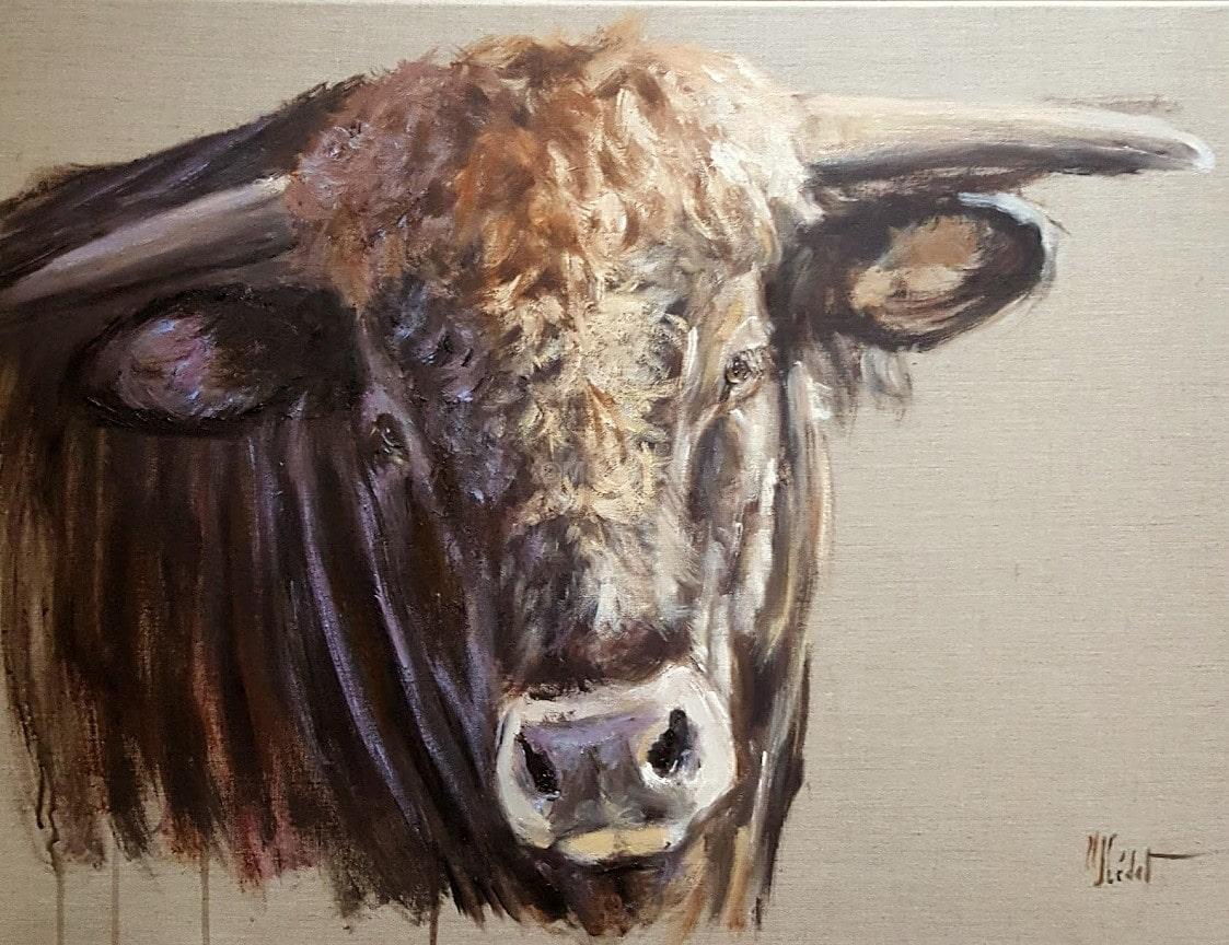 taureau d'Aubrac-Marie-Joëlle Cédat-artiste animalier peinture animaliere-art-animalier- peintre-animalier