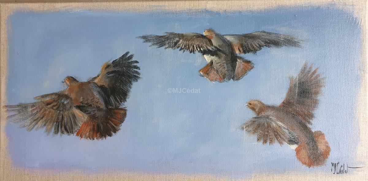 Vol de perdrix - Acrylique sur lin brut - Marie-Joëlle Cédat artiste animalier peinture animaliere