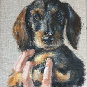 Chiot teckel dans la main – Acrylique sur lin brut – 30 x 40 cm