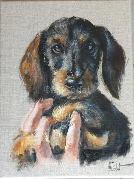 Chiot teckel dans la main - Acrylique sur lin brut - 30 x 40 cm - Marie-Joëlle Cédat artiste animalier peinture animaliere