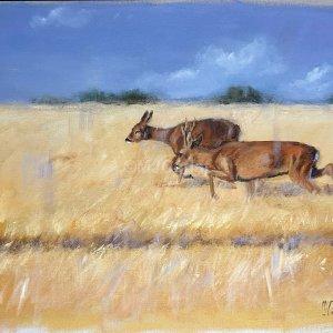 Rut du chevreuil – Acrylique sur lin brut – 70 x 65 cm