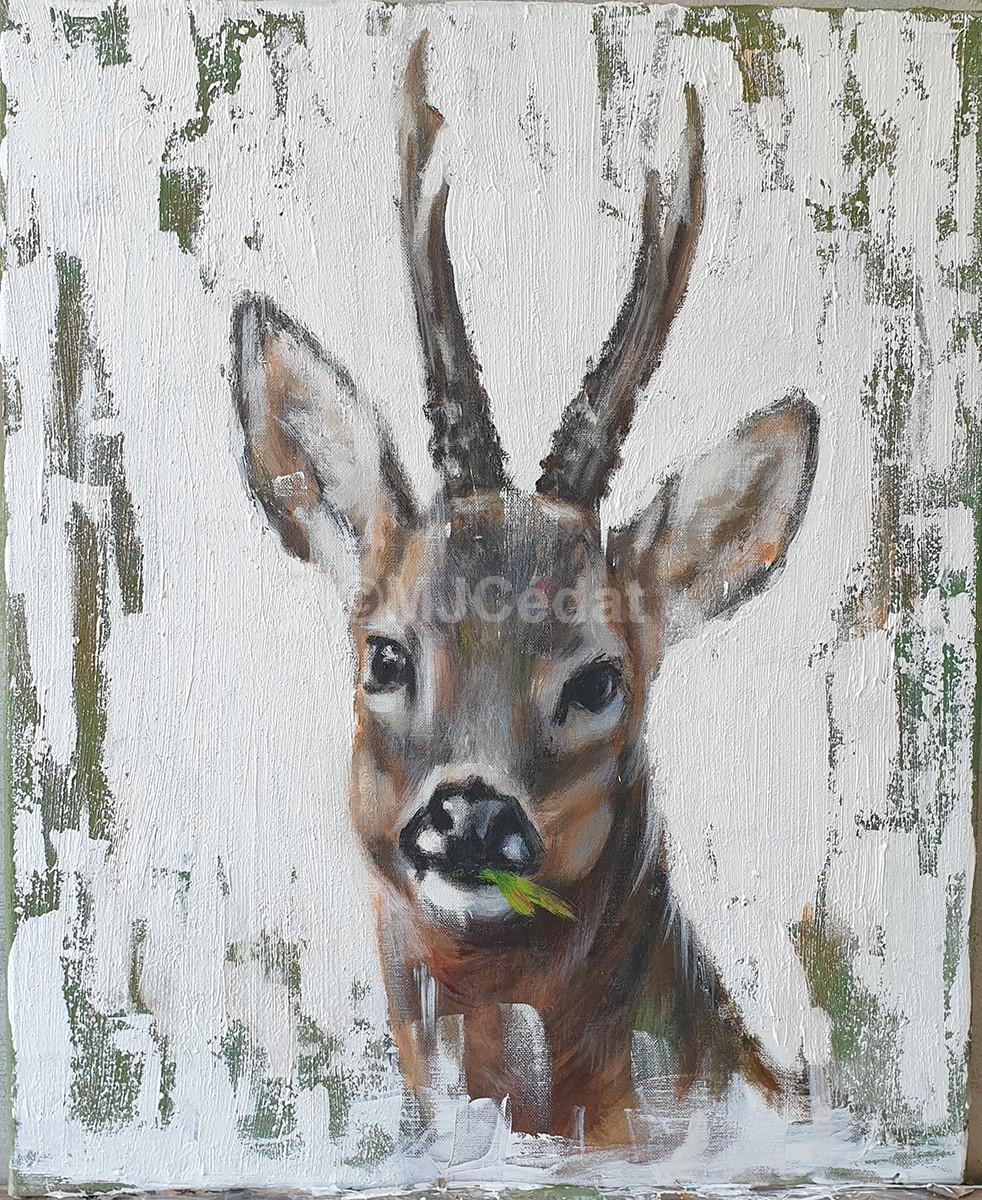 Brocard irregulier Acrylique Marie-Joëlle Cédat-artiste animalier peinture animaliere-art-animalier- peintre-animalier