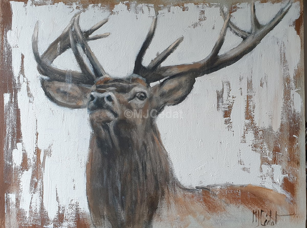 Sa majesté cerf Acrylique Marie-Joëlle Cédat-artiste animalier peinture animaliere-art-animalier- peintre-animalier