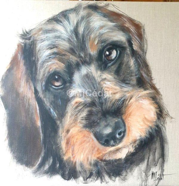 Teckel joueur – Acrylique sur toile de linMarie-Joëlle Cédat-artiste animalier peinture animaliere-art-animalier - peintre animalier
