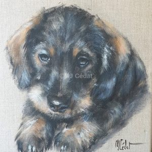 Bébé Teckel – Acrylique sur lin brut – 30 x 30 cm