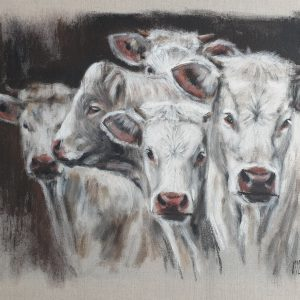 groupe de Charolaises – Acrylique sur lin brut – 60 x 75 cm